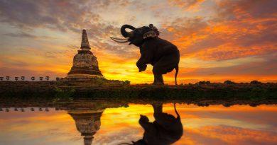 SEC Tailandesa aprova ICO