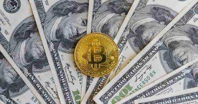 Dolar Digital é tudo aquilo que o Bitcoin não é